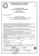Russian Maritime Register of Shipping Recogniton Certificate